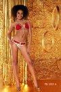 Ponta Brasil red floral bikini