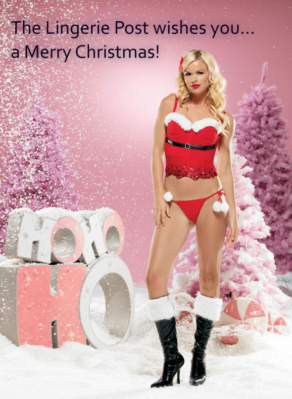 Merry Christmas - Spicy Lingerie